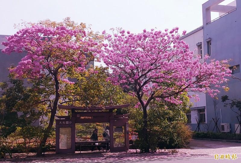 台南北門路二段上的大光國小公車候車亭